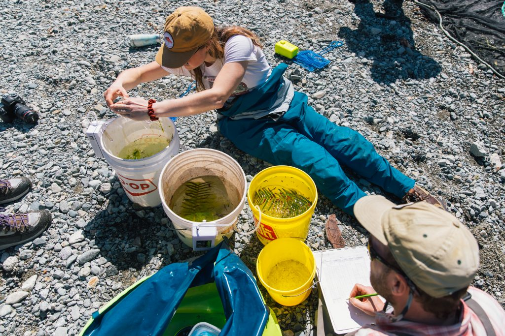 Training in Clayoquot Sound. Photo credit: Graeme Owsianski, 2021