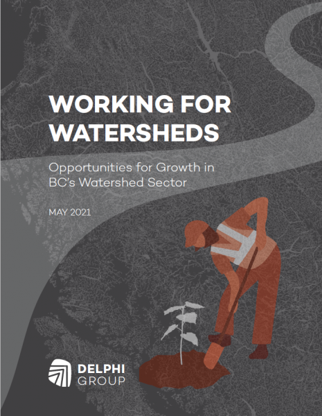 Working for Watersheds Report
